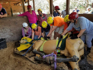 large animal rescue operations course madison2