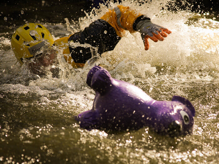 swiftwater animal rescue training